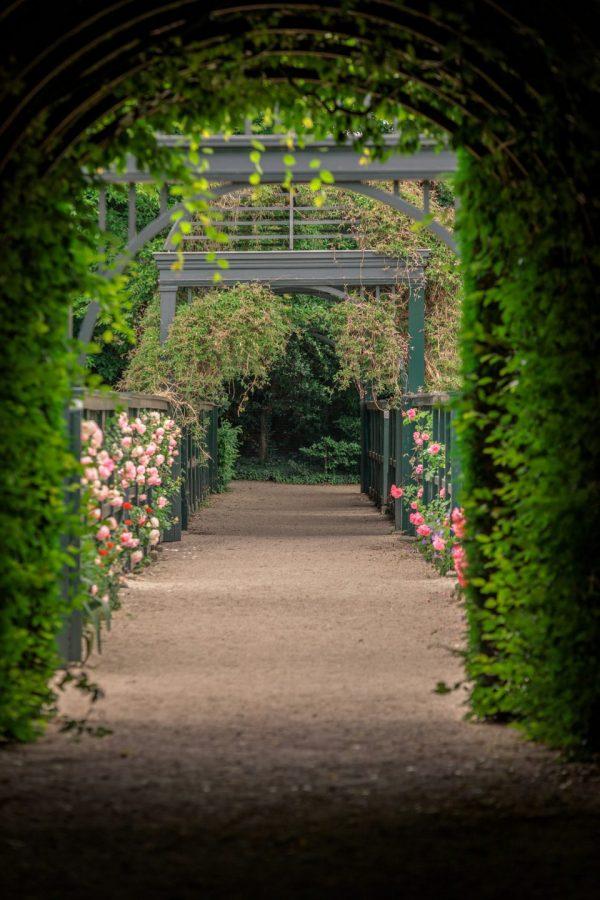 Prinsentuin Groningen - foto door Wil de Boer