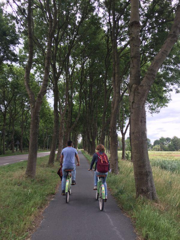 Fototour fietstocht door Meerstad en omgeving