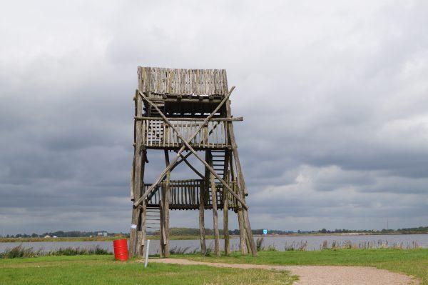 Uitkijktoren Meerstad, naast Maisdoolhof: gratis en leuk uitje met kinderen in Groningen