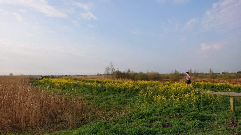 5 x Toffe hardlooproutes in Groningen