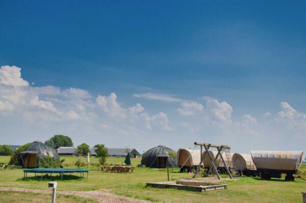 Campings Groningen: boerderijcamping Hayema Heerd Oldehove - foto van website