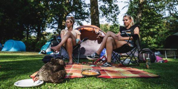 Camping Groningen: Camping Stadspark - foto Facebookpagina camping tijdens Hullabaloo Festival 2019