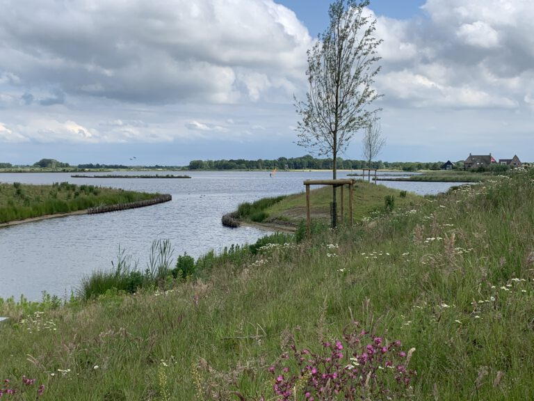 Wandelen, spelen en zwemmen in het groenste stadsdeel van Groningen: Park Meerstad
